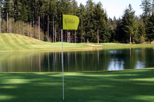 The Olympic Course's Signature 15th and 16th Holes
