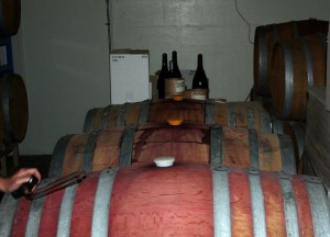 Just a few of the many barrels full of wine